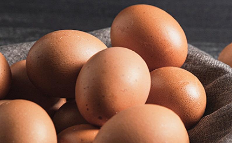Huevos Santa Rita se 'avispa' y deja la docena a $1800 como cree el ministro